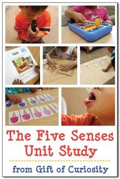 The Five Senses unit study with lots of activities and links to free printables for teaching kids about the five basic senses of sight, smell, touch, taste, and hearing #fivesenses #preschool || Gift of Curiosity