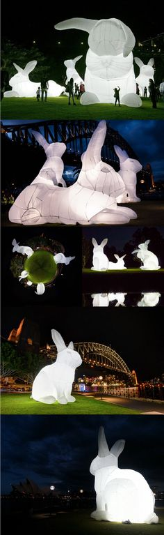 Illuminated inflatable white rabbits by Australian artist Amanda Parer for an installation entitled Intrude