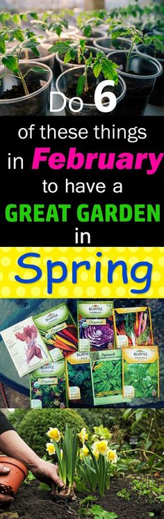 Don't wait till spring for gardening, begin with 6 things in February so that you'll have a good start when the weather gets warm again. #GardeningTips&Ideas