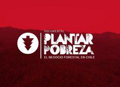 PLANTAR POBREZA, EL NEGOCIO FORESTAL EN CHILE - DOCUMENTAL