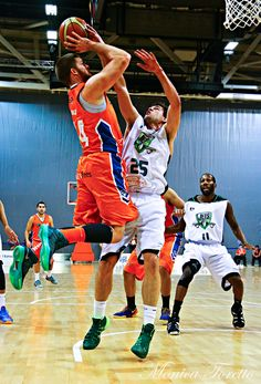 Southland Sharks' Brian Conklin in the game against Manawatu Jets at Stadium Southland.  June 07, 2014.   Sharks won 91-83.