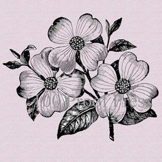 Dogwood Flower Bloom Rubber Stamp by on Etsy Poster Art, Design Poster, Art Design, Dogwood Trees, Dogwood Flowers, Dogwood Flower Tattoos, Unusual Tattoo, Flower Sketches, Pointillism
