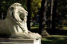 woodlawn cemetery bronx | The Woodlawn Cemetery – Bronx, NYC, NY