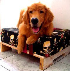 facebook.com/APalleteria - Caminha para o cachorro reutilizando pallets
