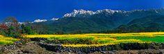 Gaoligong Mt, #Baoshan #Yunnan #photography #travel #destination