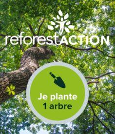 breforestaction planter un arbre cadea