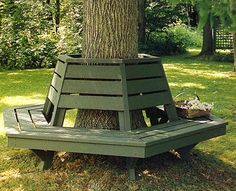 bench around a tree images | Circular Bench Around Tree Pic #22
