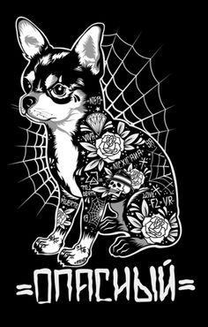 chihuahua tattooed
