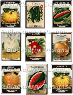decoupage paper, collage sheet,vintage food crate label,food seed packets,onion,watermelon,pumpkin,peas