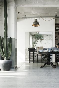 Amazing warehouse apartment with industrial furnitures. My dream place! Love the big plant - brings some life into the room.