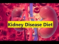 Kidney Disease Diet - How To Cure Kidney Disease #KidneyDisease