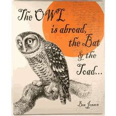 Owl Canvas Print - Classy Halloween Decor - Photo