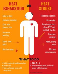 PHOENIX — There's no denying Arizona's extreme temperatures are dangerous, but do you know how to spot symptoms of heat exhaustion and heat stroke? Home Body Weight Workout, How To Perform Cpr, Emergency Preparedness Kit, Survival Hacks, First Aid Tips, Nursing School Notes, Excessive Sweating, Fitness Workout For Women, Human Body