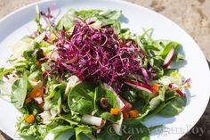 Salata cu vlastari de amaranth on http://rawveganjoy.ro/wordpress