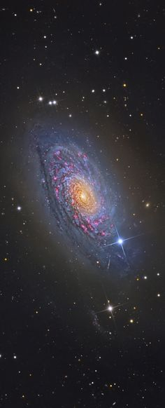 A bright spiral galaxy of the northern sky, Messier 63 is about 25 million light-years distant in the loyal constellation Canes Venatici. Also cataloged as NGC 5055, the majestic island universe is nearly 100,000 light-years across. That's about the size of our own Milky Way Galaxy. Known by the popular moniker, The Sunflower Galaxy, M63 sports a bright yellowish core. Its sweeping blue spiral arms are streaked with cosmic dust lanes and dotted with pink star forming regions. (NASA)
