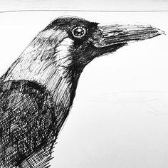 GAMZE OLGUN: Doodles Owl, Doodles, Bird, Animals, Animales, Animaux, Owls, Scribble, Sketches