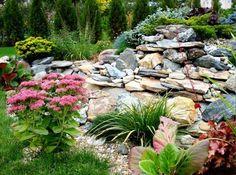 design du jardin moderne rocaille, gazon, fleurs multicolores et plantes vertes