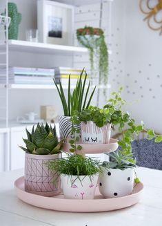 Двухъярусный лоток розового цвета для небольших комнатных растений.