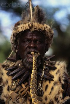 Africa   A Zulu isangoma (diviner) who does a lot of divining with snakes, is shown with a puff adder (Bitis arietans) in his mouth. He is from the village of Eshowe in KwaZulu-Natal Province in South Africa   © Roger De La Harpe; Gallo Images/Corbis