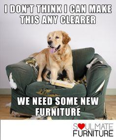 23 Best Furniture Memes Images In 2019 Furniture