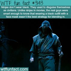WTF fun fact #3143 ~ Ninjas do not wear black.