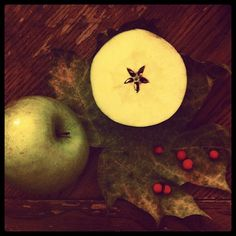 Apples are a fruit with much magickal significance. There are many superstitions, magick spells and rituals concerning apples and the apple tree. They are a symbol of love, youth, beauty and knowledge.