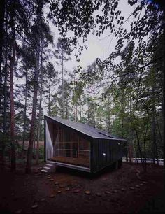 house to catch the forest, tezuka architects