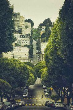 Broccoli Road, San Francisco