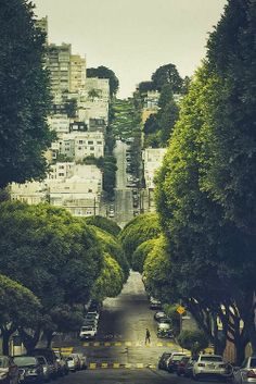 Broccoli Road, San Francisco