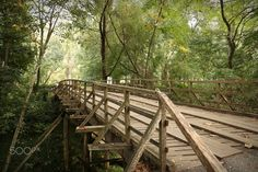 New bridge - Choupal, Coimbra