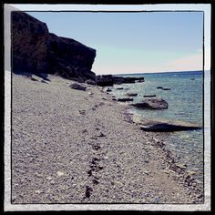 Limestone clifs #Gotland