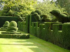 Garden Thinnings: September 2011 - Levens Hall | Chris Crowder