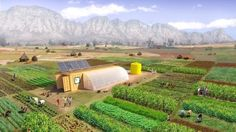 'Farm from a Box': The Best Solution for Off-Grid Farming