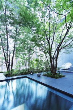 Glas Haus mit-Pool innen-Hof Gestaltung