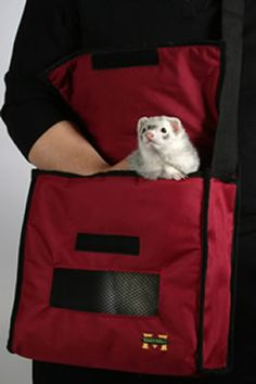Idea para hacer un bolso transportadora para trayectos MUY CORTOS