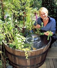 I have a barrel like this so this will be my next water garden. I already have 3...