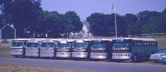 Michaud Bus Lines - Some of the GM fleet