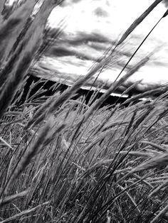 My shot along the spokane river