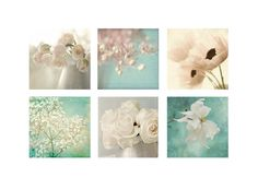 Six Ethereal  Flower Photographs Floral Art Prints by JudyStalus