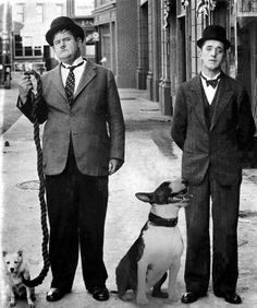 laurel and hardy comedians with English Bull Terrier Chien Bull Terrier, Pitbull Terrier, Laurel And Hardy, Best Dog Breeds, Best Dogs, Wooly Bully, Celebrity Dogs, Photo Animaliere, English Bull Terriers