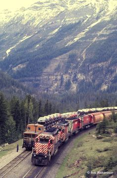Train Car, Train Tracks, Train Rides, Railroad Bridge, Railroad Tracks, Grand Funk Railroad, Canadian Pacific Railway, Vintage Trains, Railroad Pictures