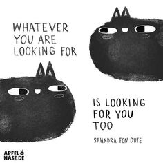 Apfelhase illustration Whatever you are looking for is looking for you, too Cats, black cats, Katzen, schwarze Katzen, quote, Sprüche, Zitate, Motivation, Inspiration, illustration, Sahndra fon Dufe