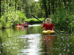 Canoeing in the Weerribben at WaterReijk in the Netherlands. The area is originated bij harvesting turf. Together with the Wieden, Weerribben forms one of the largest wetlands in Europe. More about the region: WaterReijk.nl/en
