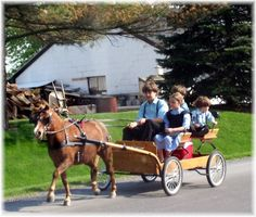 Amish children on cart, Lancaster County PA