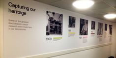 Timeline Wall Graphics for The Institute of Cancer research