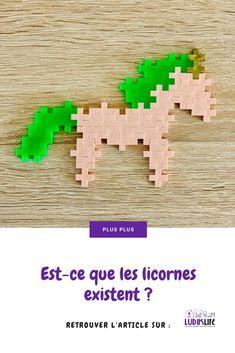 Est-ce que les licornes existent ?  Et votre enfant l'imagine de quelle couleur la licorne ?