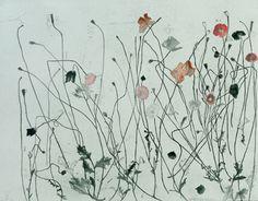elizabeth blackadder - etching + hand colouring - poppies