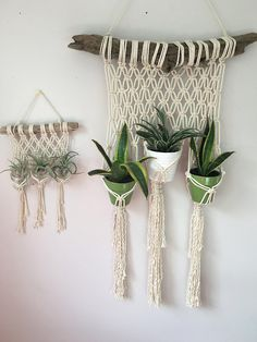 Macrame Plant Hangers / Mini Version / Macrame Mini / Triple Plant Hanger / Macrame Wall Hanging / Driftwood Plant Hanger / Simple Design / Simple Interior / Apartment Therapy / Decor for Small Spaces / Jungalow / Indoor Jungle / Indoor Plants Driftwood Macrame, Driftwood Planters, Wall Hanging Designs, Macrame Plant Hangers, Macrame Design, Hanging Plants, Indoor Plants, Indoor Herbs, Indoor Gardening