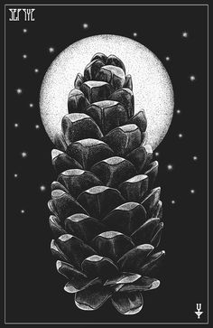 forester. pinecone illustration / dotwork by Sepsyz Art
