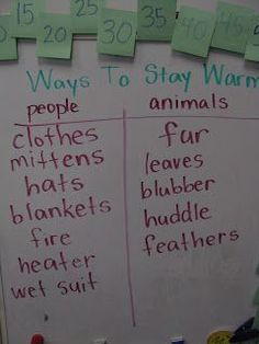 """Tiller How do animals stay warm? """"Blubber Experiment"""" Tiller How do animals stay warm? Animal Activities, Winter Activities, Preschool Winter, Kindergarten Science, Preschool Lessons, Artic Animals, Hibernating Animals, Wild Animals, Experiment"""
